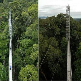 Canopy Walkway Tower